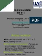 Biologia Molecular_Estructura Ac Nucleicos-24.03.2017