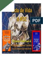 ciclo_vida_x_roi.pdf