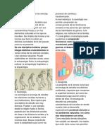 10 principales ramas de las ciencias sociales.docx