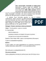Structura Proteinelor, Transcriptie, Translatie Si Reglaj Genic