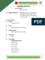 Resumen-ejecutivo Pistas y Veredas