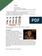 Características de Los Homínidos