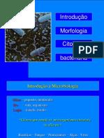 MORFOLOGIA+E+CITOLOGIA+BACTERIANA.ppt