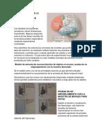 NEUROANATOMIA DE LA MEMORIA DE RECONOCIMIENTO DE OBJETOS.docx