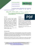 040610.pdf