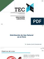 pptdistribucingnutecv01-171127050926