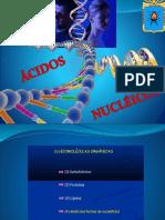 Ácidos Nucléicos (Bazauri Roncal)