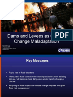 Dams and Levees as Climate Change Maladaptation