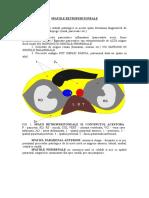 Sistemul Vascular Port