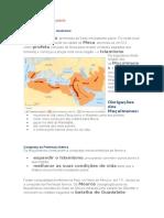 Resumo Sobre a Ocupação Muçulmana