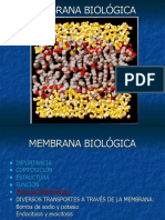 12 MEMBRANA BIOLÓGICA