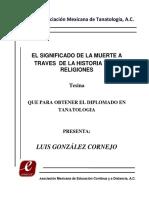 132 El significado muerte tanatolo.pdf