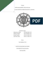 Fiks Paper Malibu1(1)
