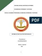 Informe Terminado de La Estancia Santa y Del Hrgdv