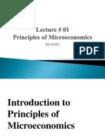 MICROECONOMICS SLIDES