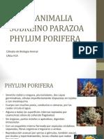 Tp4 Poriferos y Celeterados