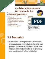 Bacterias Taxonomia