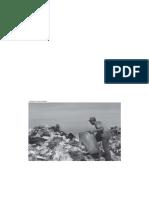 A vulnerabilidade EM_PAUTA_32_montada_site (1).pdf