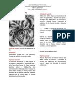 TRABAJO PRÁCTICO 1.pdf