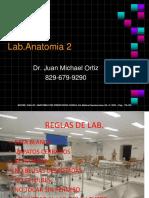 Introduion de Anatomia 2