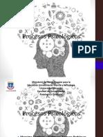 tarea2procesospsicologicosfisiologiayconducta-170218205412