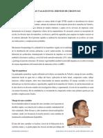 MANIOBRAS VAGALES (1).pdf