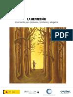 La Depresion Informacion Para Pacientes y Allegados