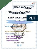 Radioanatomia Normal y Patologica Grupo 3