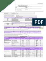 Modelo Formato 01_directiva 003_contrata Molino - Huascapampa