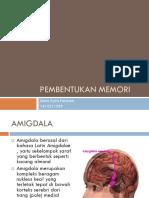 Pembentukan Memori