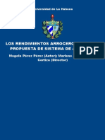 Factores de Mayor Incidencia en Los Rendimientos Arroceros Cubanos - TESIS DOCTORAL