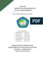 2. Askep Gerontik Dg g3-An s. Respirasi