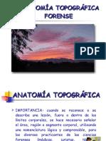 anatomia-forense-1225582479937259-8.pdf