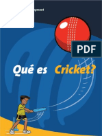 Cricket Explained Children Spanish