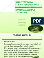 Askep Corpus Alienum Pd Mata