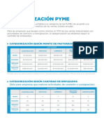 Categorías PyMEs WEB
