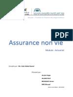 Assance non-vie.pdf