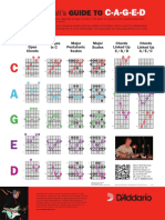 DAPO_DP0040_CAGED_System_46246.pdf