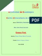 Ensayo Final, Nutrición y Sociedad.docx