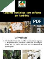 Apresentação; herbario
