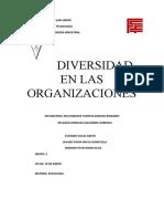 diversida en las organizaciones