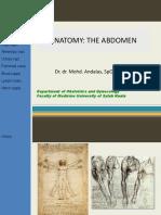 Anatomi Abdomen