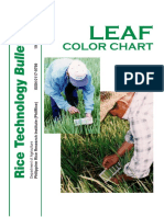 leaf-color-chart-english.pdf