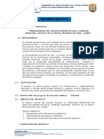 RESUMEN-EJECUTIVO.doc