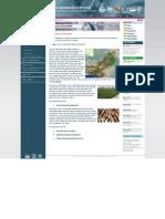 Ais Pakistan - Crops Information