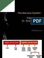 06-Nervous-System.ppt