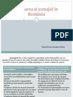 Ocuparea Și Șomajul În România-Diana