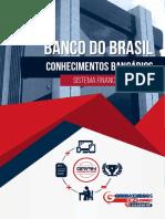 6560640-estrutura-do-sistema-financeiro-nacional (1).pdf