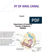 anatomy of anal canal.ppt