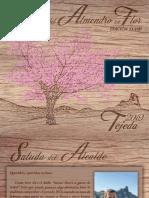 Programa Fiestas Del Almendro 2019 Web
